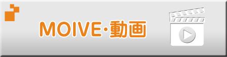 MOVIE・動画